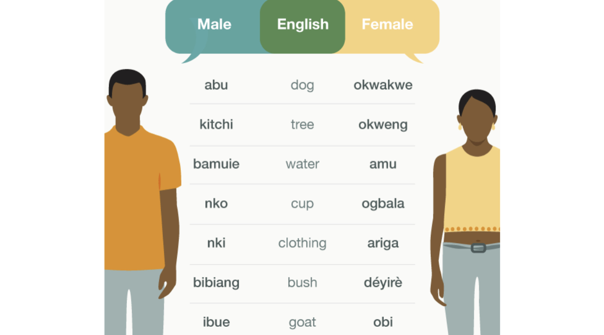 The People Of Ubang where men and women speak a different language and say Adam and Eve Hail from their Community